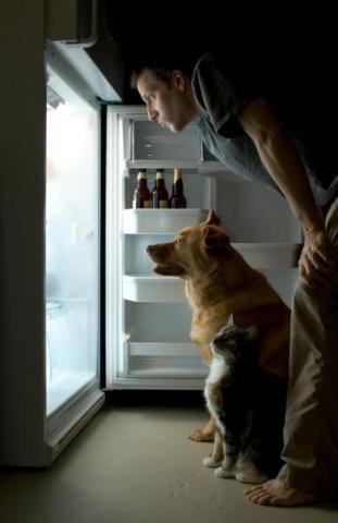 ремонт холодильников, ремонт холодильников в минске, ремонт холодильников атлант, ремонт холодильников на дому, ремонт холодильников на дому минск, ремонт холодильников атлант